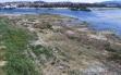Beyşehir Gölü Can Çekişiyor ! Haberi